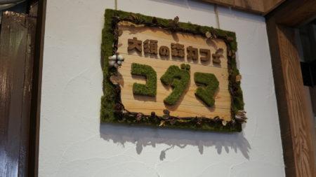 大須にジブリの森でカフェれる場所があったよ!【大須の森カフェ コダマ】